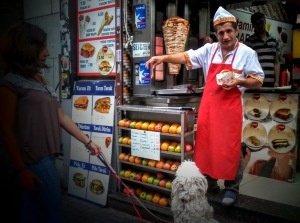 Oour local döner seller always had some scraps for the dogs